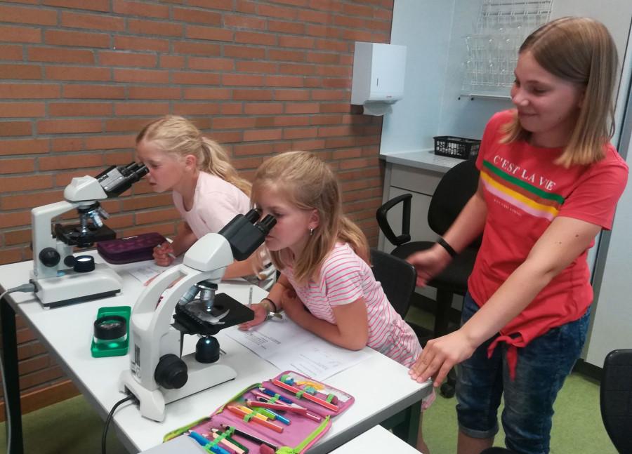 Schlerinnen_mikroskopieren